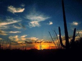CALEXICO (FOTO 2)