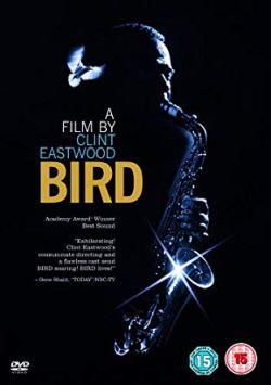 BIRD (FOTO 1)