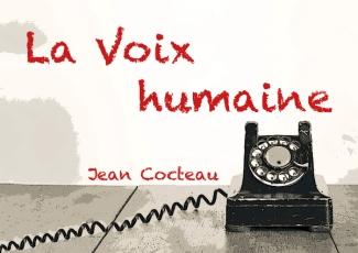 VOX (FOTO 3)