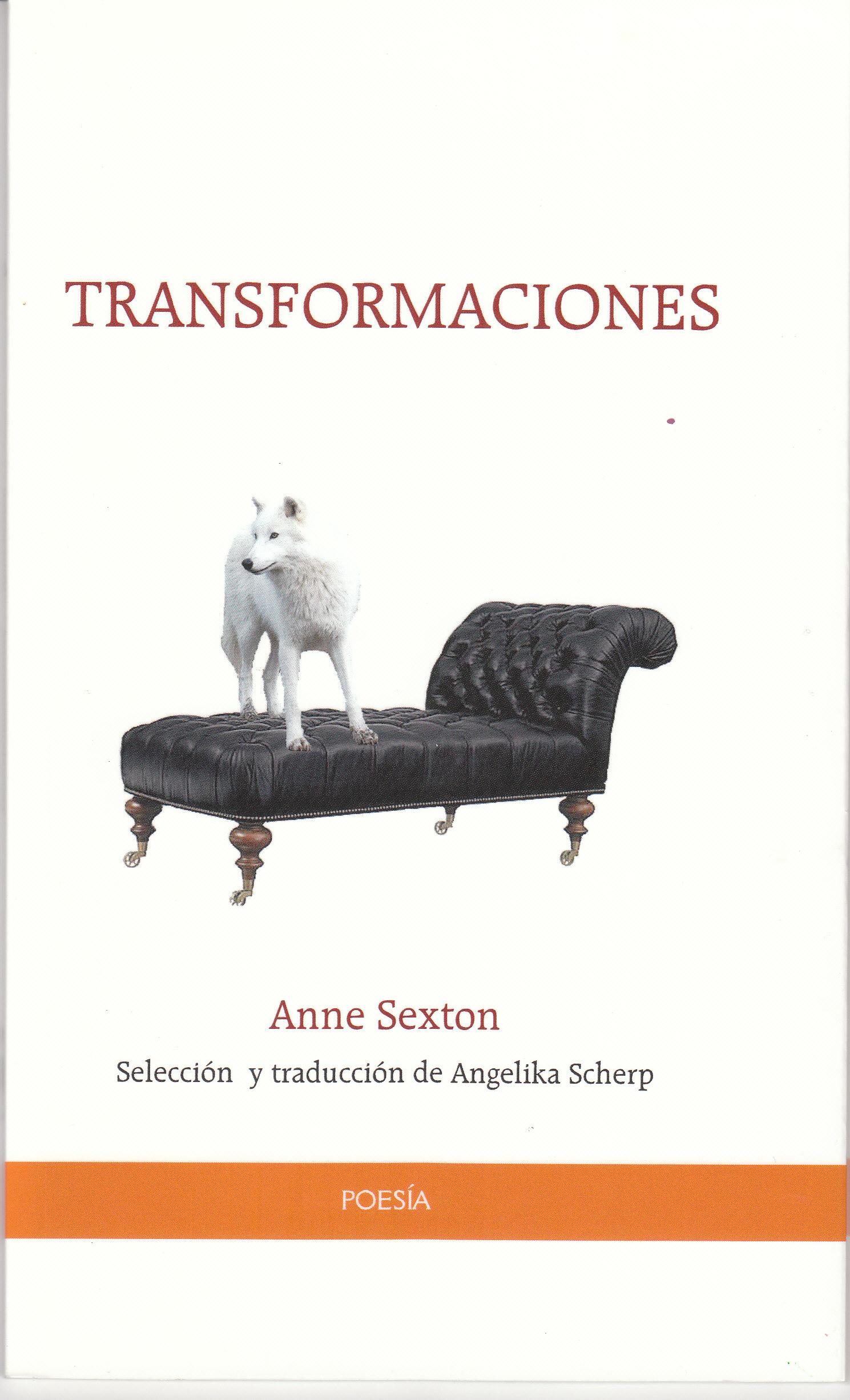 TRANSFORMATIONS (FOTO 1)